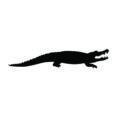 Alligator Silhouette Stencil