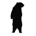 Standing Bear Silhouette Stencil