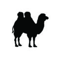 Bactrian Camel Silhouette Stencil