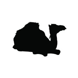 Sitting Dromedary Camel Silhouette Stencil
