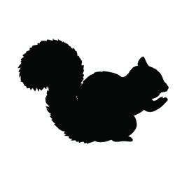 Squirrel Silhouette Stencil Free Stencil Gallery