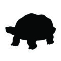 Turtle Silhouette Stencil