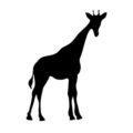 Giraffe Silhouette Stencil