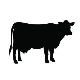 Cow Silhouette Stencil | Free Stencil Gallery