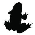 Frog Silhouette Stencil