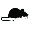 Mouse Silhouette Stencil