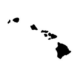 Hawaii Stencil