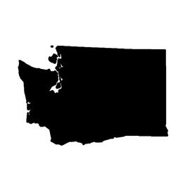 Washington Stencil