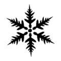 Snowflake Stencil 16