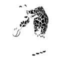Giraffe 02 Stencil