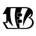 NFL Cincinnati Bengals Stencil