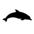 Dolphin Silhouette Stencil
