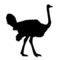 Ostrich Silhouette Stencil