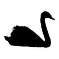 Swan Silhouette Stencil