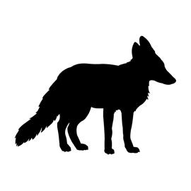 ninja silhouette red fox - photo #27