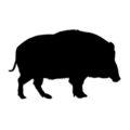 Wild Boar Silhouette Stencil