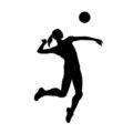 Volleyball Hitter Silhouette Stencil